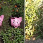 Поросята и зайцы - вечная тема для огорода