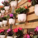 Из двухлитровых бутылок можно нарезать аккуратных горшочков под цветы