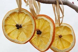 citrus-slices-new-year-deco1-2-1