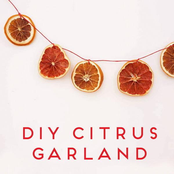 citrus-slices-new-year-deco2